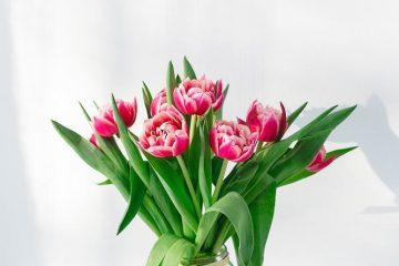 Køb blomster i din online blomsterbutik
